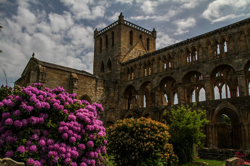 Jedburgh Abbey Scotland back 1