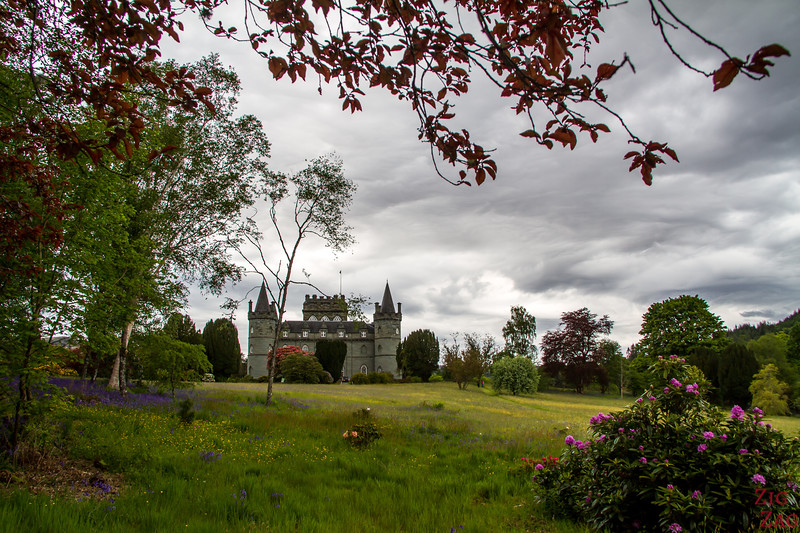 Inveraray Castle Woodland Walk 7