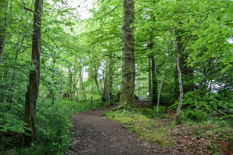Best views of Loch Lomond Scotland - Duncryne walk 5