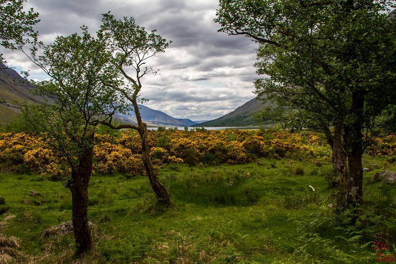 Loch Etive Scotland 1