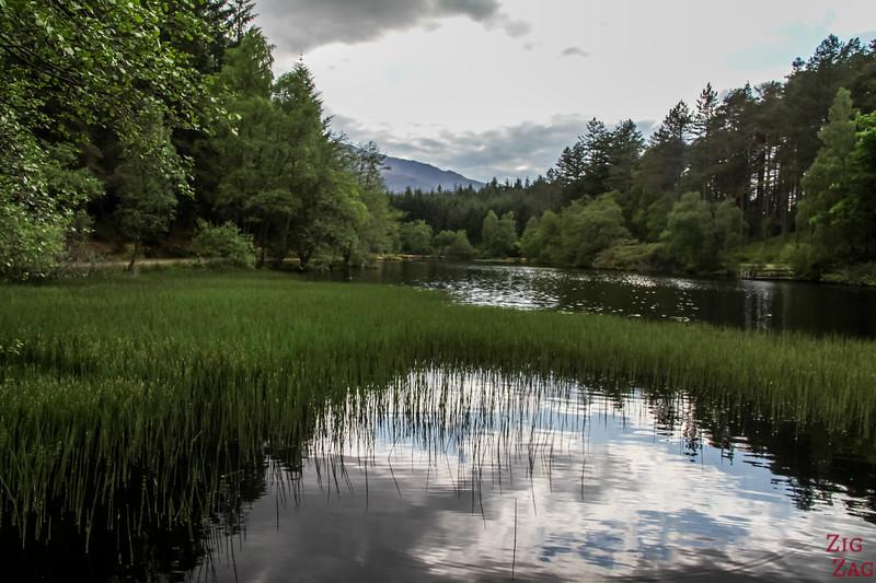 Glencoe Lochan Trail - Glencoe Walks 17
