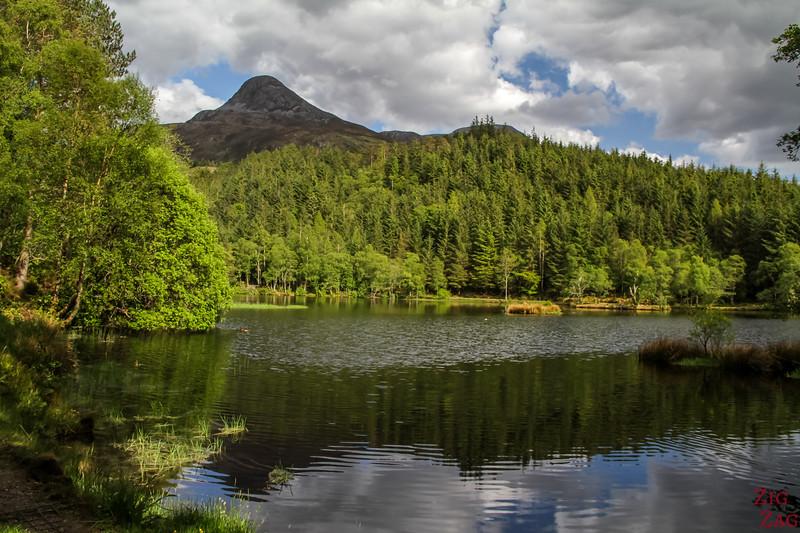 Glencoe Lochan Trail - Glencoe Walks 11