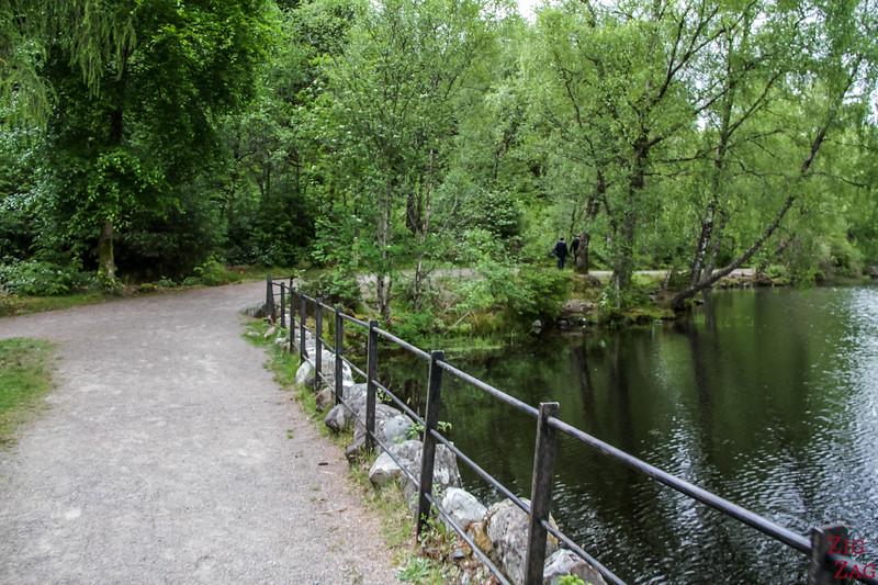 Glencoe Lochan Trail - Glencoe Walks 3