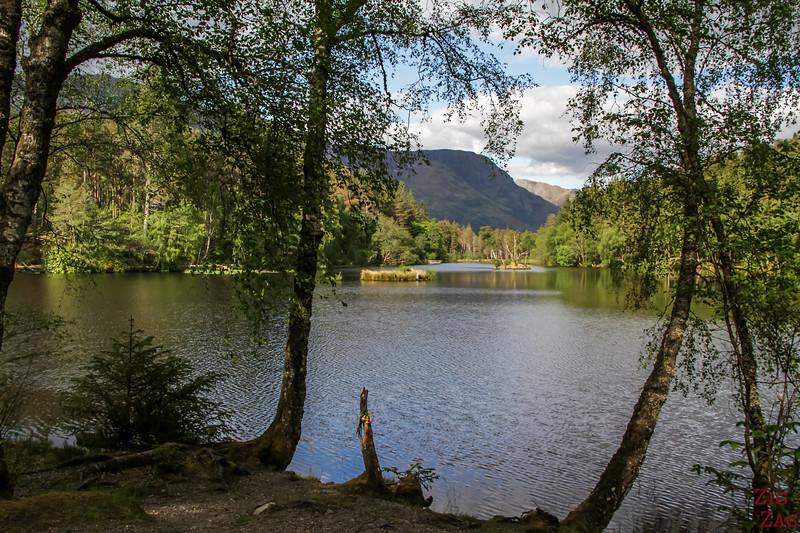 Glencoe Lochan Trail - Glencoe Walks 9