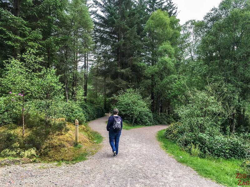 Glencoe Lochan Trail - Glencoe Walks 4