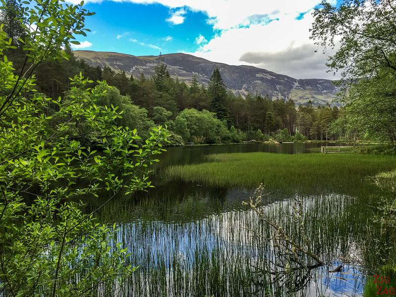 Glencoe Lochan Trail - Glencoe Walks 16