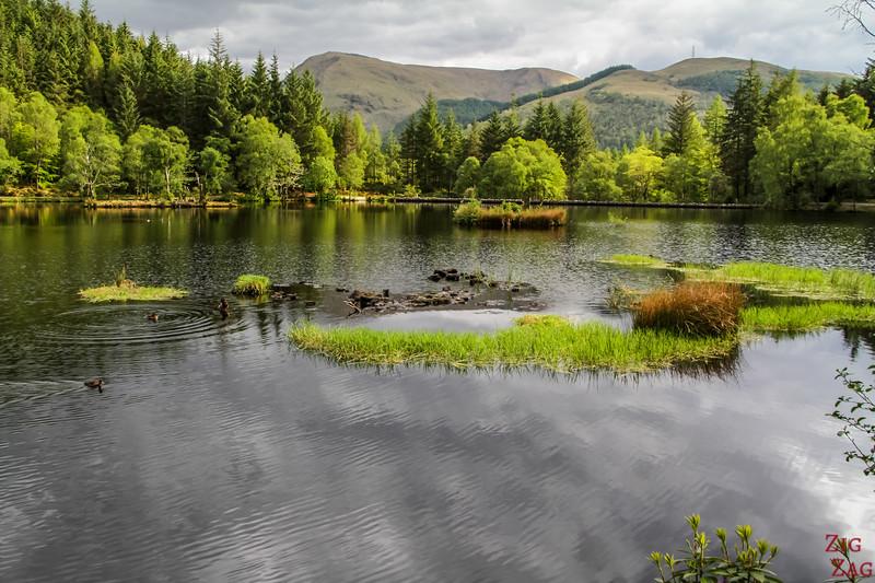 Glencoe Lochan Trail - Glencoe Walks 12