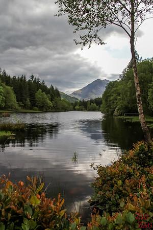 Glencoe Lochan Trail - Glencoe Walks 14