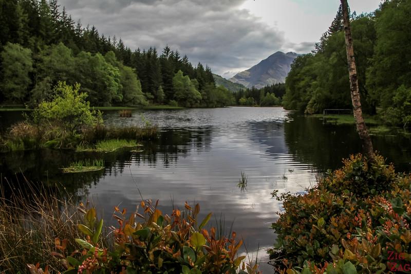Glencoe Lochan Trail - Glencoe Walks 13