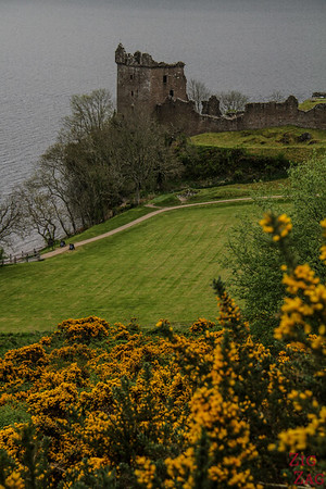 Urquhart Castle - view from the road 5