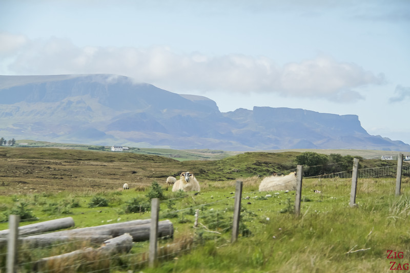 View of Trotternish