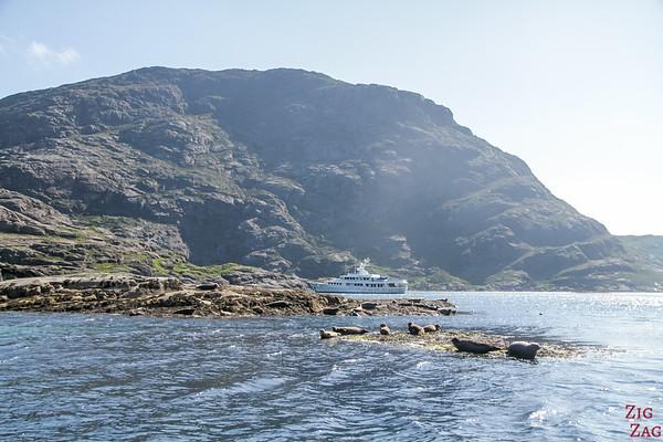 Phoques Loch Coruisk Elgol Skye 1