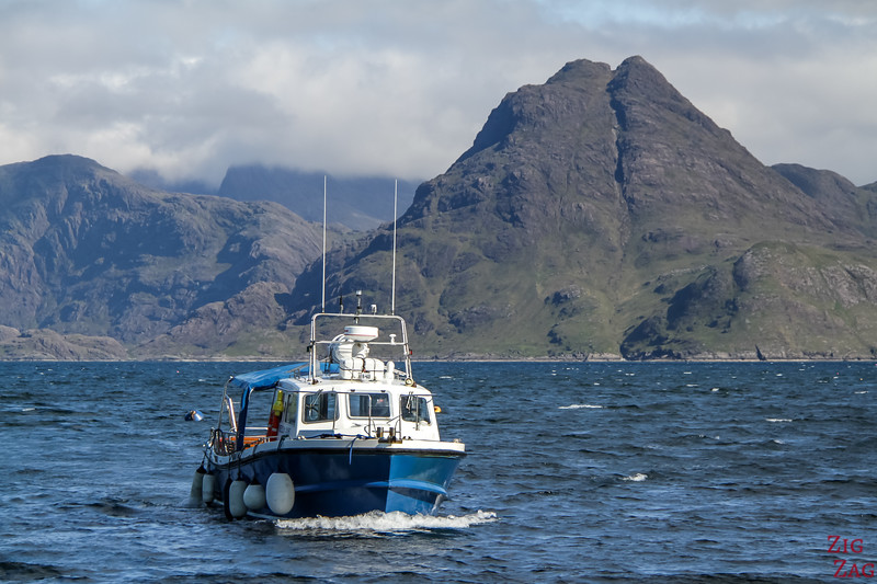 Bella Jane Elgol Boat Trip review 1