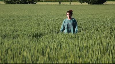 Video of walking in the field.