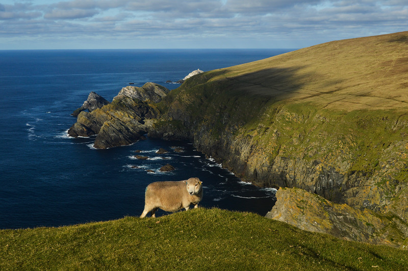 Unst Orkney islands Scotland