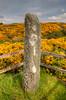 Standing stone, Isle of Gigha