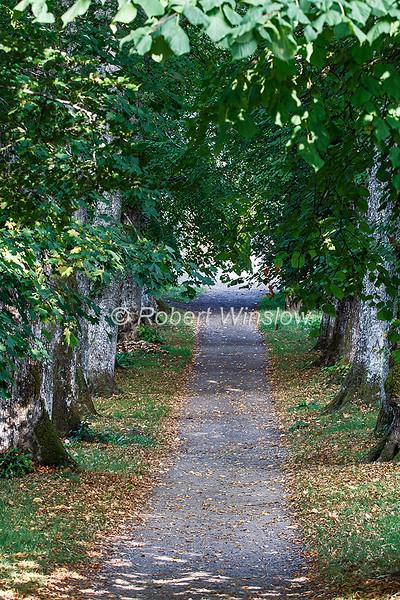 Pathway, Blair Atholl, Scotland, United Kingdom, Europe