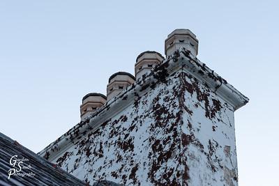 Chimney Lichen