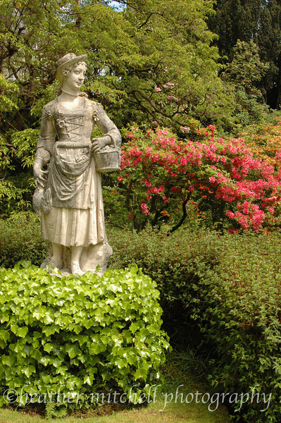 """Statue at Torosay Castle, Isle of Mull  <form target=""""paypal"""" action=""""https://www.paypal.com/cgi-bin/webscr"""" method=""""post""""> <input type=""""hidden"""" name=""""cmd"""" value=""""_s-xclick""""> <input type=""""hidden"""" name=""""hosted_button_id"""" value=""""2735063""""> <table> <tr><td><input type=""""hidden"""" name=""""on0"""" value=""""Sizes"""">Sizes</td></tr><tr><td><select name=""""os0""""> <option value=""""Matted 5x7"""">Matted 5x7 $20.00 <option value=""""Matted 8x10"""">Matted 8x10 $40.00 <option value=""""Matted 11x14"""">Matted 11x14 $50.00 </select> </td></tr> </table> <input type=""""hidden"""" name=""""currency_code"""" value=""""USD""""> <input type=""""image"""" src=""""https://www.paypal.com/en_US/i/btn/btn_cart_SM.gif"""" border=""""0"""" name=""""submit"""" alt=""""""""> <img alt="""""""" border=""""0"""" src=""""https://www.paypal.com/en_US/i/scr/pixel.gif"""" width=""""1"""" height=""""1""""> </form>"""