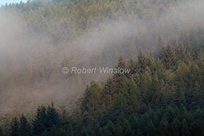 Morning, Mist, Laggan Locks, Caledonian Canal; Great Glen Way; Scottish Highlands, Scotland; United Kingdom, Europe