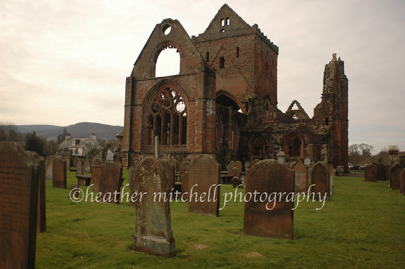 """Sweetheart Abbey, New Abbey  <form target=""""paypal"""" action=""""https://www.paypal.com/cgi-bin/webscr"""" method=""""post""""> <input type=""""hidden"""" name=""""cmd"""" value=""""_s-xclick""""> <input type=""""hidden"""" name=""""hosted_button_id"""" value=""""2759507""""> <table> <tr><td><input type=""""hidden"""" name=""""on0"""" value=""""Sizes"""">Sizes</td></tr><tr><td><select name=""""os0""""> <option value=""""Matted 5x7"""">Matted 5x7 $20.00 <option value=""""Matted 8x10"""">Matted 8x10 $40.00 <option value=""""Matted 11x14"""">Matted 11x14 $50.00 </select> </td></tr> </table> <input type=""""hidden"""" name=""""currency_code"""" value=""""USD""""> <input type=""""image"""" src=""""https://www.paypal.com/en_US/i/btn/btn_cart_SM.gif"""" border=""""0"""" name=""""submit"""" alt=""""""""> <img alt="""""""" border=""""0"""" src=""""https://www.paypal.com/en_US/i/scr/pixel.gif"""" width=""""1"""" height=""""1""""> </form>"""
