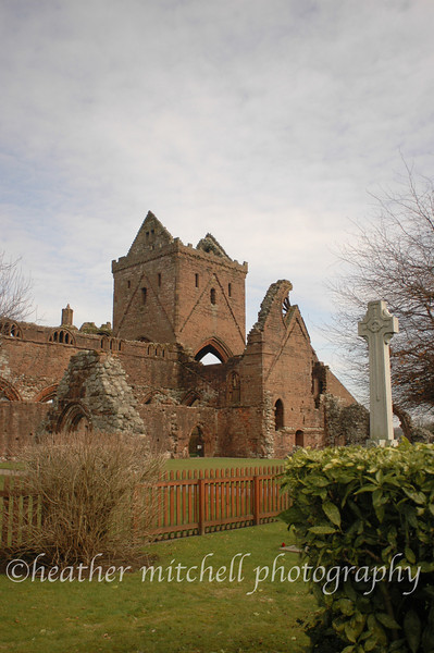 "Sweetheart Abbey <form target=""paypal"" action=""https://www.paypal.com/cgi-bin/webscr"" method=""post""> <input type=""hidden"" name=""cmd"" value=""_s-xclick""> <input type=""hidden"" name=""hosted_button_id"" value=""MHYRNTFRSJ4SJ""> <table> <tr><td><input type=""hidden"" name=""on0"" value=""Sizes"">Sizes</td></tr><tr><td><select name=""os0""> 	<option value=""Matted 5x7"">Matted 5x7 $20.00</option> 	<option value=""Matted 8x10"">Matted 8x10 $40.00</option> 	<option value=""Matted 11x14"">Matted 11x14 $50.00</option> </select> </td></tr> </table> <input type=""hidden"" name=""currency_code"" value=""USD""> <input type=""image"" src=""https://www.paypal.com/en_US/i/btn/btn_cart_SM.gif"" border=""0"" name=""submit"" alt=""PayPal - The safer, easier way to pay online!""> <img alt="""" border=""0"" src=""https://www.paypal.com/en_US/i/scr/pixel.gif"" width=""1"" height=""1""> </form>"