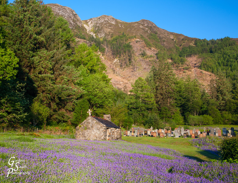 Loch Levan Cemetery and Flowers