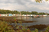 "Tobermory, Isle of Mull <form target=""paypal"" action=""https://www.paypal.com/cgi-bin/webscr"" method=""post""> <input type=""hidden"" name=""cmd"" value=""_s-xclick""> <input type=""hidden"" name=""hosted_button_id"" value=""2LPYD2QHL7SX6""> <table> <tr><td><input type=""hidden"" name=""on0"" value=""Sizes"">Sizes</td></tr><tr><td><select name=""os0""> 	<option value=""Matted 5x7"">Matted 5x7 $20.00 USD</option> 	<option value=""Matted 8x10"">Matted 8x10 $40.00 USD</option> 	<option value=""Matted 11x14"">Matted 11x14 $50.00 USD</option> </select> </td></tr> </table> <input type=""hidden"" name=""currency_code"" value=""USD""> <input type=""image"" src=""https://www.paypalobjects.com/en_US/i/btn/btn_cart_SM.gif"" border=""0"" name=""submit"" alt=""PayPal - The safer, easier way to pay online!""> <img alt="""" border=""0"" src=""https://www.paypalobjects.com/en_US/i/scr/pixel.gif"" width=""1"" height=""1""> </form>"