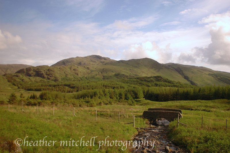 "Scottish Highlands <form target=""paypal"" action=""https://www.paypal.com/cgi-bin/webscr"" method=""post""> <input type=""hidden"" name=""cmd"" value=""_s-xclick""> <input type=""hidden"" name=""hosted_button_id"" value=""GPJA9K6ETJ8VY""> <table> <tr><td><input type=""hidden"" name=""on0"" value=""Sizes"">Sizes</td></tr><tr><td><select name=""os0""> 	<option value=""Matted 5x7"">Matted 5x7 $20.00 USD</option> 	<option value=""Matted 8x10"">Matted 8x10 $40.00 USD</option> 	<option value=""Matted 11x14"">Matted 11x14 $50.00 USD</option> </select> </td></tr> </table> <input type=""hidden"" name=""currency_code"" value=""USD""> <input type=""image"" src=""https://www.paypalobjects.com/en_US/i/btn/btn_cart_SM.gif"" border=""0"" name=""submit"" alt=""PayPal - The safer, easier way to pay online!""> <img alt="""" border=""0"" src=""https://www.paypalobjects.com/en_US/i/scr/pixel.gif"" width=""1"" height=""1""> </form>"