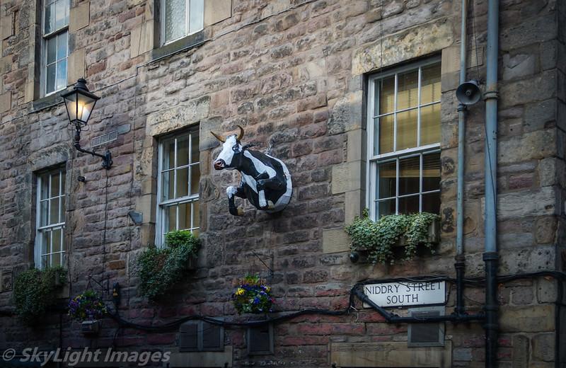 Edinburgh Mad Cow.....