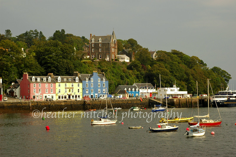 "Tobermory, Isle of Mull  <form target=""paypal"" action=""https://www.paypal.com/cgi-bin/webscr"" method=""post""> <input type=""hidden"" name=""cmd"" value=""_s-xclick""> <input type=""hidden"" name=""hosted_button_id"" value=""2735139""> <table> <tr><td><input type=""hidden"" name=""on0"" value=""Sizes"">Sizes</td></tr><tr><td><select name=""os0""> 	<option value=""Matted 5x7"">Matted 5x7 $20.00 	<option value=""Matted 8x10"">Matted 8x10 $40.00 	<option value=""Matted 11x14"">Matted 11x14 $50.00 </select> </td></tr> </table> <input type=""hidden"" name=""currency_code"" value=""USD""> <input type=""image"" src=""https://www.paypal.com/en_US/i/btn/btn_cart_SM.gif"" border=""0"" name=""submit"" alt=""""> <img alt="""" border=""0"" src=""https://www.paypal.com/en_US/i/scr/pixel.gif"" width=""1"" height=""1""> </form>"