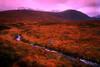 SCO-Glencoe,Highlands-1881