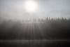 Morning, Mist, Caledonian Canal; Great Glen Way; Scottish Highlands, Scotland; United Kingdom, Europe