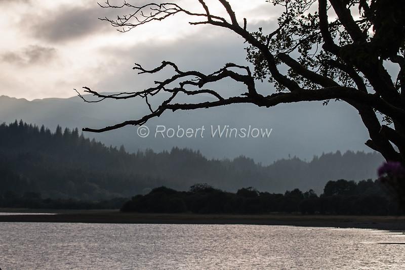 Loch Venachar, The Trossachs National Park, Sterling District, Scotland. United Kingdom, Europe