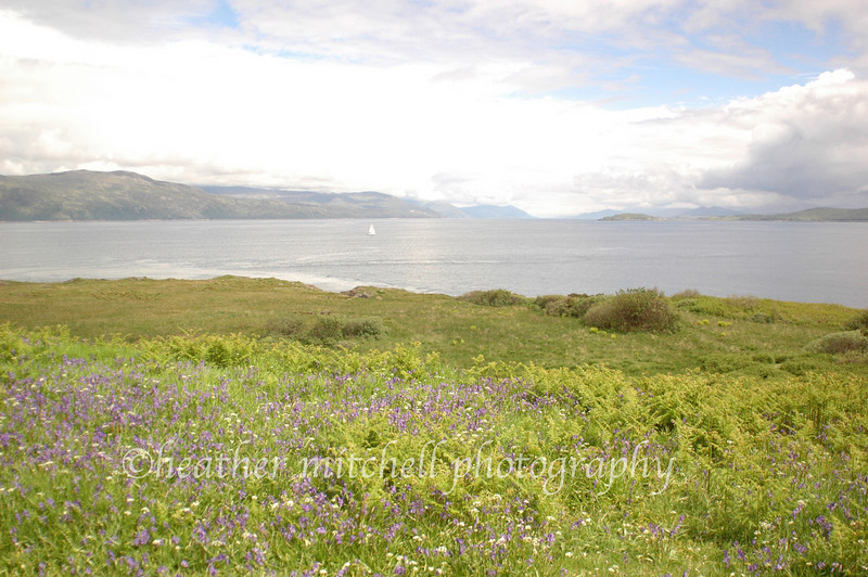 """Isle of Mull, Inner Hebrides  <form target=""""paypal"""" action=""""https://www.paypal.com/cgi-bin/webscr"""" method=""""post""""> <input type=""""hidden"""" name=""""cmd"""" value=""""_s-xclick""""> <input type=""""hidden"""" name=""""hosted_button_id"""" value=""""2735450""""> <table> <tr><td><input type=""""hidden"""" name=""""on0"""" value=""""Sizes"""">Sizes</td></tr><tr><td><select name=""""os0""""> <option value=""""Matted 5x7"""">Matted 5x7 $20.00 <option value=""""Matted 8x10"""">Matted 8x10 $40.00 <option value=""""Matted 11x14"""">Matted 11x14 $50.00 </select> </td></tr> </table> <input type=""""hidden"""" name=""""currency_code"""" value=""""USD""""> <input type=""""image"""" src=""""https://www.paypal.com/en_US/i/btn/btn_cart_SM.gif"""" border=""""0"""" name=""""submit"""" alt=""""""""> <img alt="""""""" border=""""0"""" src=""""https://www.paypal.com/en_US/i/scr/pixel.gif"""" width=""""1"""" height=""""1""""> </form>"""