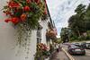 Flowers, Street, Dunkeld, Scotland, United Kingdom, Europe