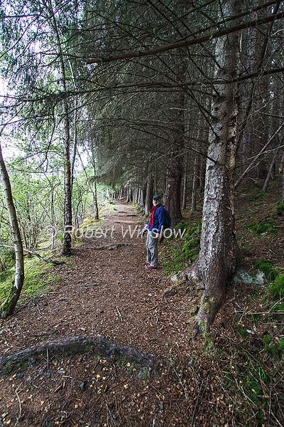 Hiker, Hking Trail, Great Glen Way, Loch Ness, Scottish Highlands, Great Glen Way, Caledonian Canal, Scotland, United Kingdom, Europe