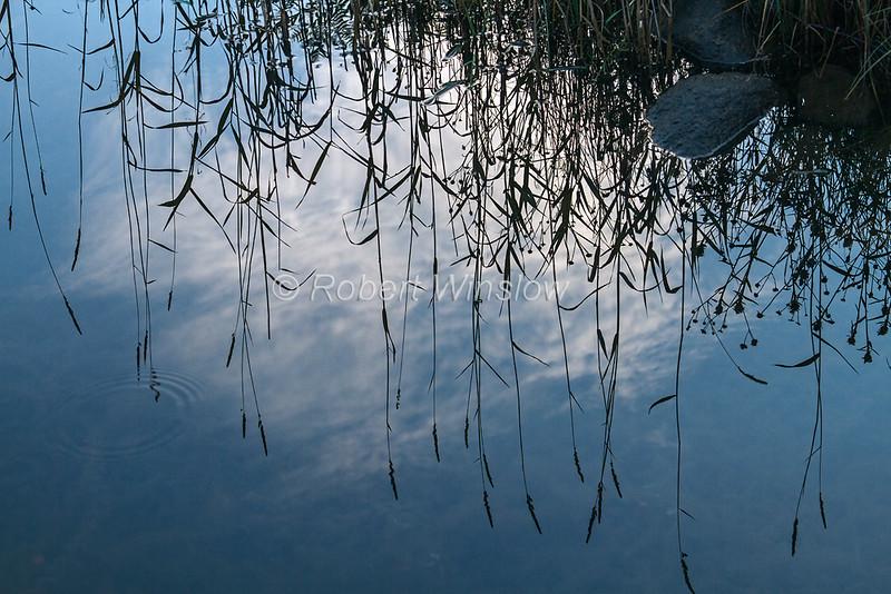 Reflection, Loch Oich, Caledonian Canal; Great Glen Way; Scottish Highlands, Scotland; United Kingdom, Europe