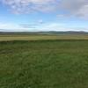 Maeshowe plain