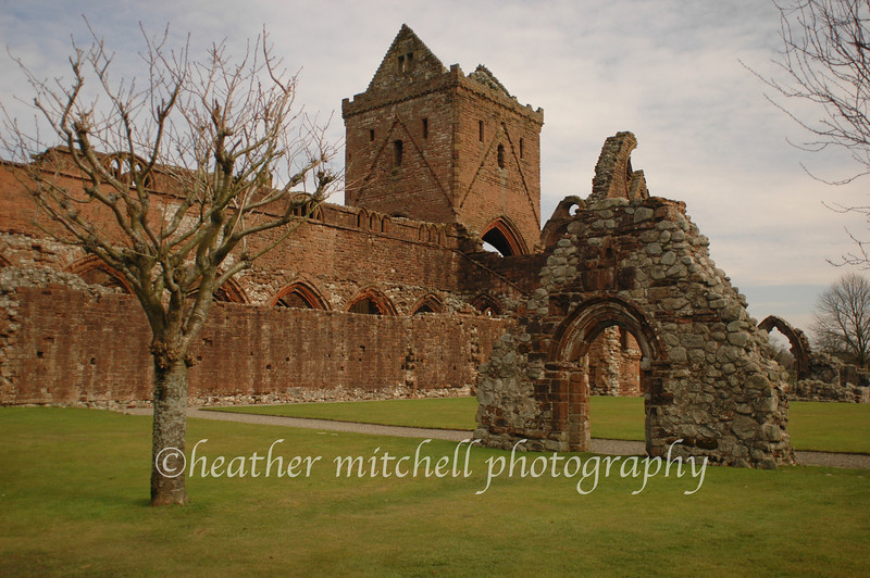 """Sweetheart Abbey, New Abbey  <form target=""""paypal"""" action=""""https://www.paypal.com/cgi-bin/webscr"""" method=""""post""""> <input type=""""hidden"""" name=""""cmd"""" value=""""_s-xclick""""> <input type=""""hidden"""" name=""""hosted_button_id"""" value=""""2735318""""> <table> <tr><td><input type=""""hidden"""" name=""""on0"""" value=""""Sizes"""">Sizes</td></tr><tr><td><select name=""""os0""""> <option value=""""Matted 5x7"""">Matted 5x7 $20.00 <option value=""""Matted 8x10"""">Matted 8x10 $40.00 <option value=""""Matted 11x14"""">Matted 11x14 $50.00 </select> </td></tr> </table> <input type=""""hidden"""" name=""""currency_code"""" value=""""USD""""> <input type=""""image"""" src=""""https://www.paypal.com/en_US/i/btn/btn_cart_SM.gif"""" border=""""0"""" name=""""submit"""" alt=""""""""> <img alt="""""""" border=""""0"""" src=""""https://www.paypal.com/en_US/i/scr/pixel.gif"""" width=""""1"""" height=""""1""""> </form>"""