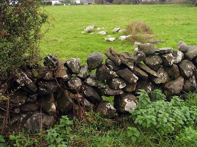 IMG_2452Inchaquin rock wall