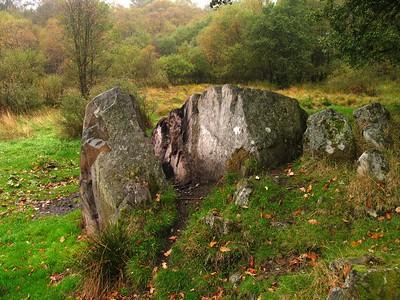 IMG_1691 rocks in the glen