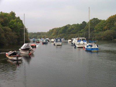 IMG_1615 River Leven