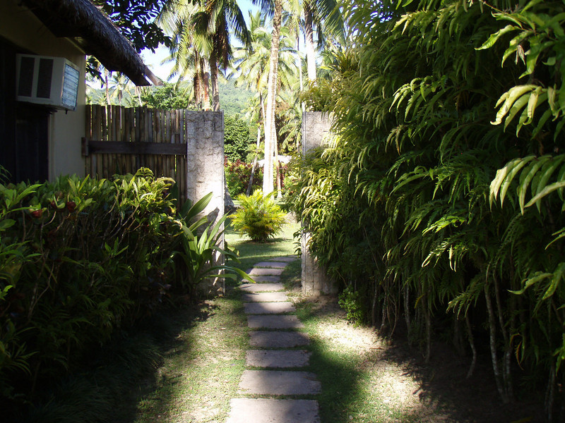 The path along side our bure.