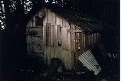 Burnett Bay - Hut