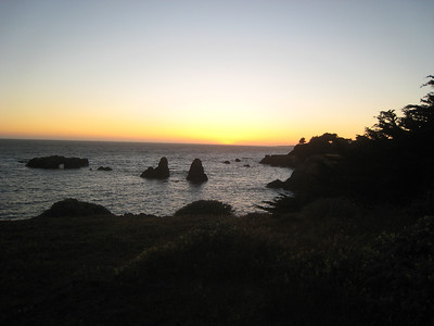 Sea Ranch, June 2013