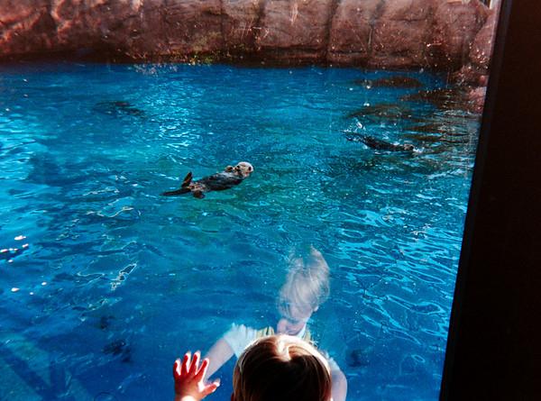 Sea World, Disney, Spring 1993
