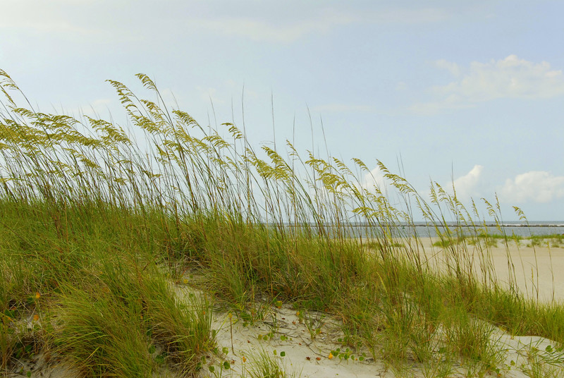 Gently Blowing, Wrightsville Beach NC