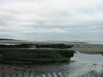 Seaton beach at low tide looking towards hartlepool
