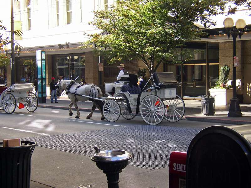 Who'd of thought that there would be horse-drawn carriages!